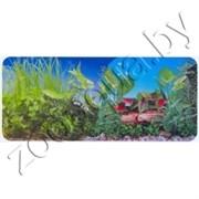 Фон для аквариума красные растения/скалы  60х15/2ст 9011/9051