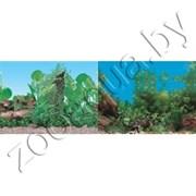Фон для аквариума Растительный(синий) /растительный с камнем (синий) 60х15/2ст 9011/9031