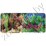 Фон для аквариума река/коряга 60х15/2ст 9058/9059