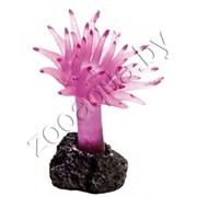 Силиконовый коралл фиолетовый decor 215