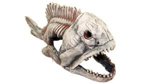 Скелет рыбы №904