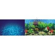 Background 002 Морская лагуна/Гавайи 40см
