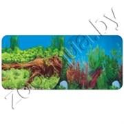 Фон для аквариума Растения с корягой/Река 50 см/2ст 9009/9021