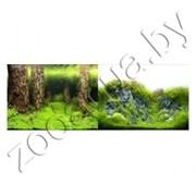 Фон для аквариума Затопленный лес/Камни с растениями 30x15/2ст 9086/9087