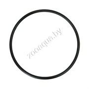Уплотнительное кольцо для внешнего фильтра Tetratec EX 400/600/700