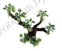 "ArtUniq Branched Driftwood With Anubias nana M1 - Декоративная композиция из пластика ""Ветвистая коряга с анубиасом нана"", 30x15x26 см"