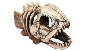 Скелет рыбы №901