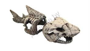 Скелет рыбы №999