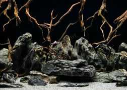 Background 050/30  (73/74)  Морская лагуна/Натуральная мистика 30см