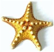 Звезда большая (оранж) К-07