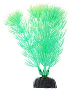 Растение для аквариума Plant 055/10 Амбулия 10см