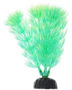 Растение для аквариума Plant 055/20 Амбулия 20см