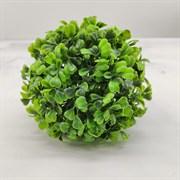 Растение шар d-10см