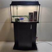Аквариум Aqua ТВ 78 л. с тумбой и оборудованием