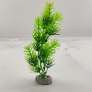 Растения 20см микс