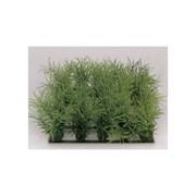Растение пластиковое Коврик 25х25см, зеленое