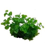 Композиция из пластиковых растений 15см PRIME