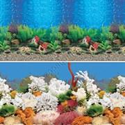 Гавайи/Коралловый риф 60см