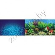 Морская лагуна/Гавайи 60см