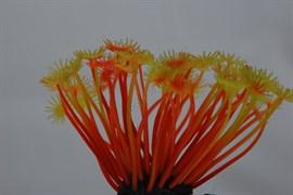 Коралл силиконовый желто-красный 5х5х10см