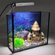 """Аквариум Aqua """"прямоугольник"""" на 14 л с светильником DOPHIN 14LED и декором"""