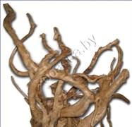 "VladOx Коряга ""Корень Азалии"" Azalea wood 40-70 см (цена за кг)"