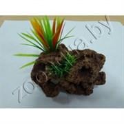 Биокерамика Риф с растениями К-115