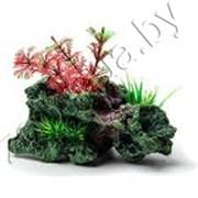 Биокерамика Риф с растениями К-114