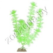 Растение пластиковое GLOFISH флуоресцентное зеленое 15,24 см.