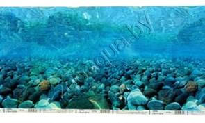 Фон моререка, камень, F1M2 - 30 см.х 1 м.