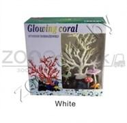 AM0015W Светящийся коралл, белый 16,516,5см.