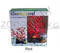 AM0015R Светящийся коралл, красный 16,516,5см