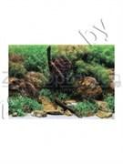 Background 06530  (7576)  Водный садЯркие камни 30см