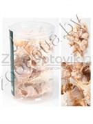 Shell 010 Набор морских раковин в банке 800мл300-400гр , 7-11 см