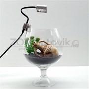 Аквариум Aqua бокал на 3.5 л. готовый комплект