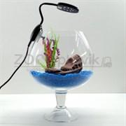Аквариум Aqua бокал на 7 л. готовый комплект 1