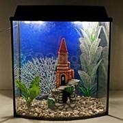 Аквариум Aqua Телик на 55 л. готовый комплект 10
