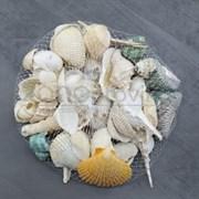 Shell 001 Набор морских раковин в сеточке 200 гр ФРУКТЫ МОРЯ МИКС