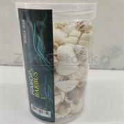 Shell 004 Набор морских раковин в банке 800мл 300-400 гр