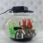 Аквариум Aqua круглый на 10 л. готовый комплект c рыбкой петушок и декором