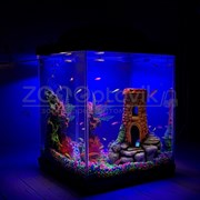 Аквариум Куб Aqua Glo на 20л. день/ночь с рыбками данио GloFish