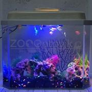 Аквариум Aqua Glo панорама на 15л. день/ночь с рыбками тернеция GloFish